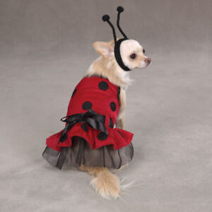 Casual Canine LADY BUG   Dog Halloween Costume XS - L