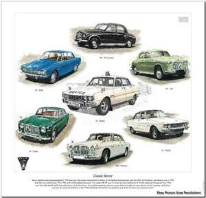 ROVER-classico-Stampa-artistica-P4-P5-P6-75-100-2000-3000-3500-2-litri-3-5