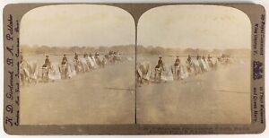 India-Calcutta-Elefanti-Pageant-1912-Foto-Stereo-Vintage-Albumina