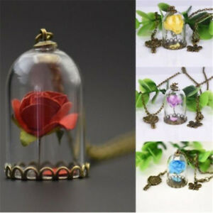 Chain-Beauty-and-the-Beast-Real-Rose-Dried-Flower-Glass-Bottle-Necklace-Pendant