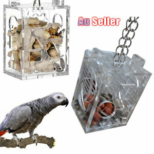 Birds-SELLER-Foraging-Toys-Feeder-Cage-Parrot-Accessory-Acrylic-Fruits-Food