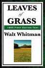 Leaves of Grass (1855 First Edition Text) by Walt Whitman (Hardback, 2008)