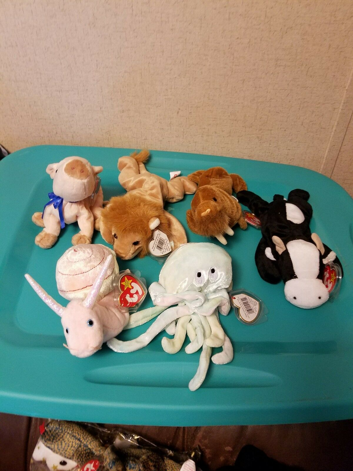 BELOW WHOLESALE LOT 12 ASSORTED NEW but but but RETIRED TY Beanie Babies BEANIES NWT 3fabf5