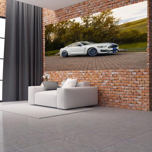Papier peint toile et Papier Papier Peint Ford Mustang Voiture USA Nr hf6379