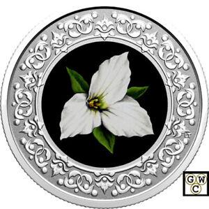 2020White-Trillium-Floral-Emblems-of-Canada-039-3Fine-Silver-Coin-RCM-177110-18910