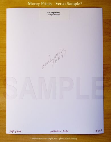 hand-signed photo by Craig Morey Sara Jaymes 8165 Fine Art Nude