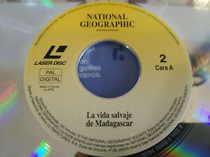 LA VIDA SALVAJE DE MADAGASCAR TIBURONES - LASERDISC LD NATIONAL GEOGRAPHIC VIDEO