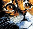 ESQUEMA PARA PUNTO DE CRUZ GRAFICO MIRADA DE GATO CAT EYES CROSS STITCH PATTERN