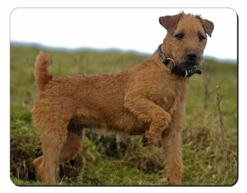 Lakeland Terrier Dog Computer Mouse Mat Christmas Gift Idea, AD-LT1M