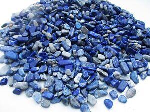 LAPIS-LAZULI-Afghanistan-5-15mm-tumbled-chips-xmini-xsmall-1-2-lb-bulk-stones