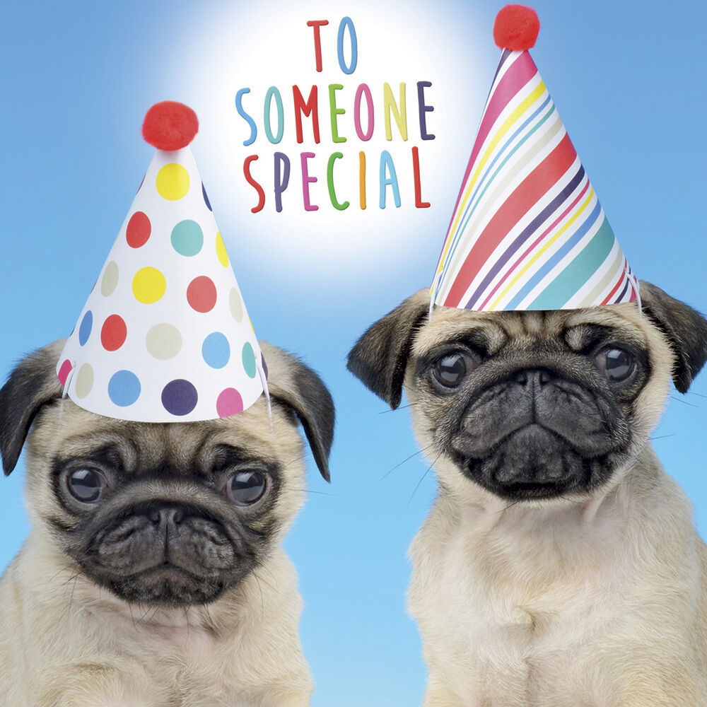 Birthday hugs pugs and kisses to you Smiley cute black Pug dog birthday card