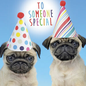 Image Is Loading Pugs In Party Hats Birthday Card 039 To