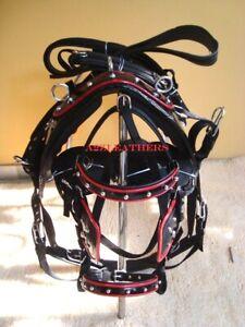 Premium-Black-Synthetic-patent-Nylon-Driving-harnes-for-single-Horse-cart-4-size