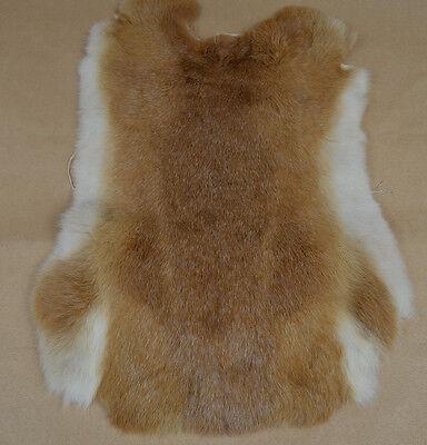KANINCHENFELL XL Pelz Hasen echt Fell Basteln Kaninchen Blauer Wiener 12