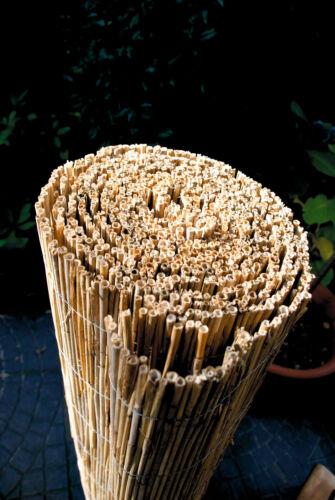 Schilfrohrmatte Maine Bambusmatte Sichtschutz Sichtschutzzaun Gartenzaun Schilf