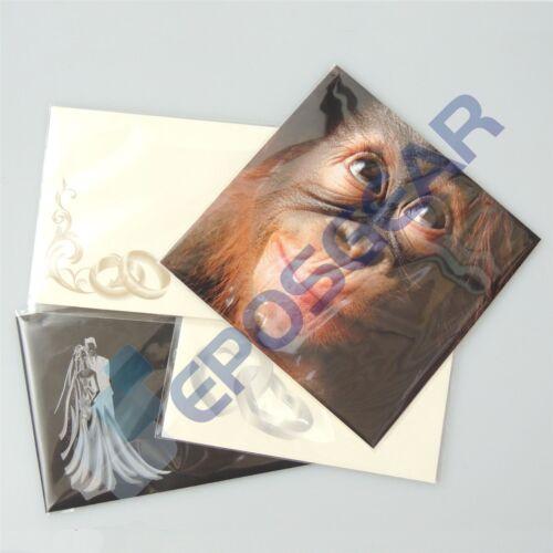 50 6x6 155mm x 160mm cellophane transparents carte de vœux peel & seal affichage sacs
