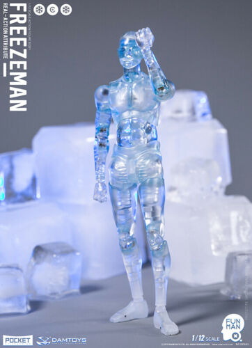 """DAMTOYS 1//12 Scale Freezeman 6/"""" Male Action Figure Collectible W//Head Doll DPS05"""