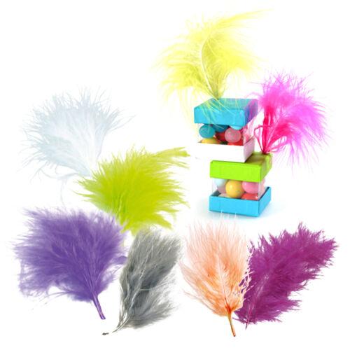 7 cm plumas decoración invitado regalo stx.2571 Dekofedern 20 unidades burdeos aprox