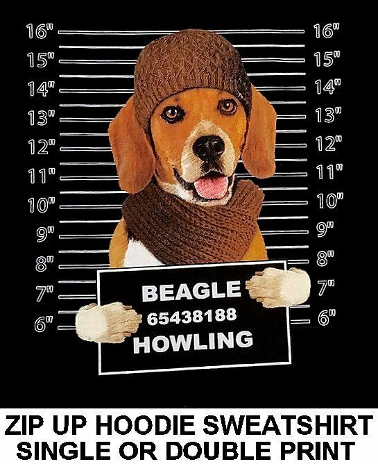 VERY COOL BEAGLE MUG SHOT FUNNY NAUGHTY BAD DOG ZIP HOODIE SWEATSHIRT WS775