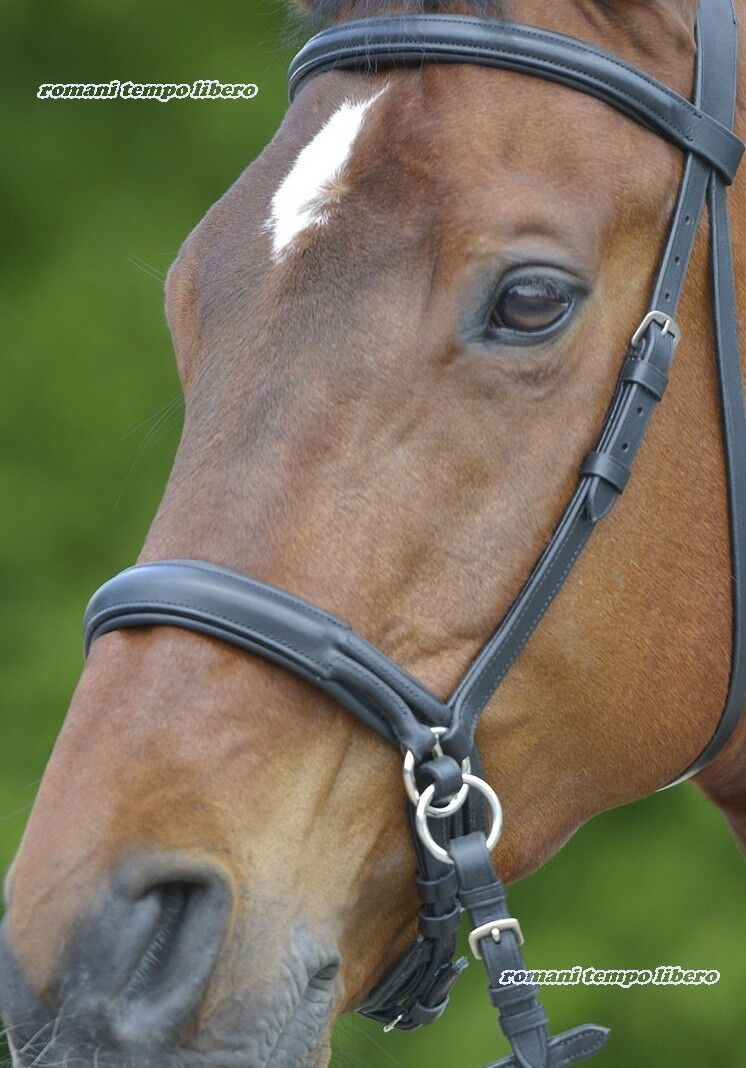 BITLESS BRIDLE BRIDLE WITHOUT EMBOUCHURE LEATHER WITH REINS