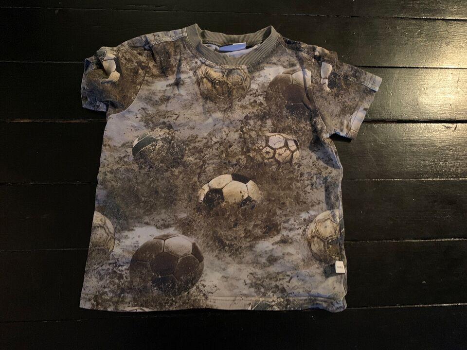 T-shirt, T shirt , Molo