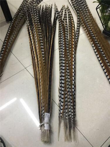 Wholesale 10//50pcs Haute Qualité Naturel Rare Pheasant Tail Feathers 30-170 cm