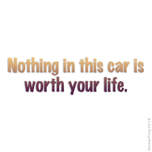 Size #3199 Nothing In Car Worth Life Decal Sticker Choose Pattern