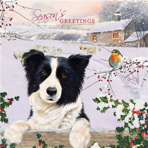 Border-Collie-Robin-Sheep-Snow-Christmas-Friends-10-pack-small-Charity-cards