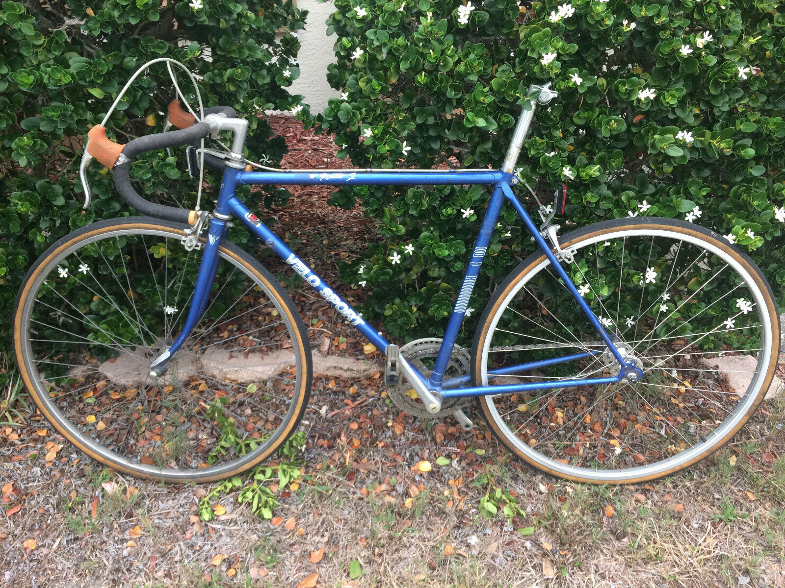 Velo Sport Super Routier 12 Fixed Gear  Bicycle  just buy it