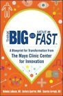 Think Big, Start Small, Move Fast: A Blueprint for Transformation from the Mayo Clinic Center for Innovation by Barbara Spurrier, Nicholas LaRusso, Gianrico Farrugia (Paperback, 2014)
