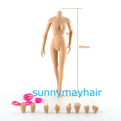 1//6 Scale 12/'/' Steel Joint Body Seamless Middle Breast Female Girl Figure