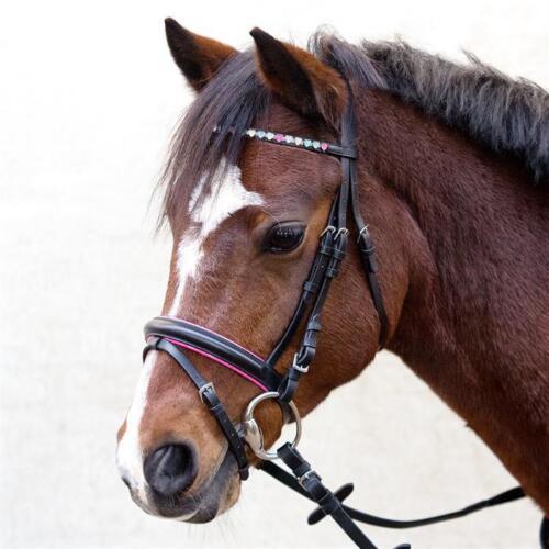 STAR Trensenzaum Sparkling Hearts Trense Pferdetrense Zaumzeug Pferdezaumzeug