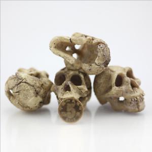 Resin-Skull-Aquarium-Decoration-Terrarium-Reptile-Cave-Fish-Tank-Ornaments-New