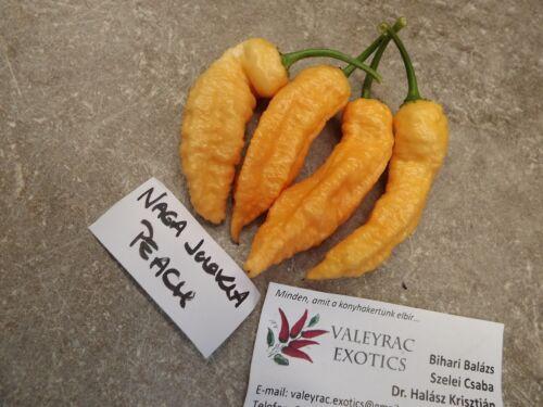 Naga Peach Chili 5 Seeds-Seed-seeds-Vegetable seeds