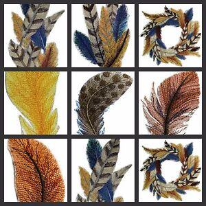 Fancy Feathers Collection  Embroidered Iron On Patches