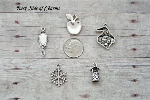 14pc or 5pc Snow White Charm Set Lot Collection //Mirror,Witch,Apple,Wishing Well