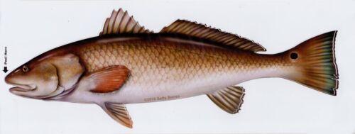 Redfish Profile Decal Bumper Sticker Gifts Men Fishermen Fish Fishing