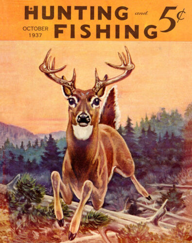Whitetail Deer Hunting Magazine Poster Art Print Antlers Sheds Bow Arrow MAG03
