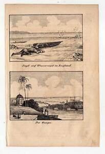 Lithographie 1840 Gutes Renommee Auf Der Ganzen Welt Hart Arbeitend Ganges-indien Jagd Auf Wasservögel In England-vogeljagd