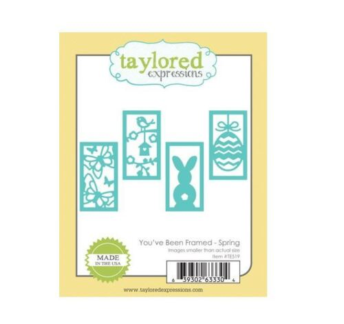 Taylored Expressions Cutting Die Set ~ YOU/'VE BEEN FRAMED ~ SPRING  ~TE519