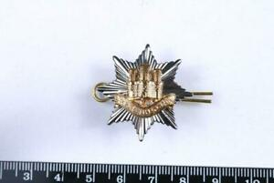 GENUINE BRITISH ARMY ROYAL ANGLICAN REGIMENT OFFICERS CAP BADGE MILITARY