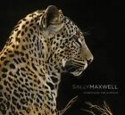 Sally Maxwell: Scratching the Surface by Todd Wilkinson (Hardback, 2016)