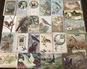Nice-Lot-of-30-Antique-Greetings-Postcards-with-BIRDS-Bird-in-sleeves-s772
