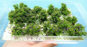 Warhammergreen-Shrubs-2-1-5-8in-About-With-Flowers-Purple-w21-31-36-Diorama