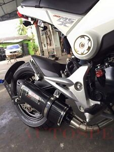 Details about Low Mount Exhaust Full System Stainless For Honda grom msx  all model 2013-2018