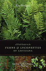 A Field Guide to the Ferns & Lycophytes of Louisiana  : Including East Texas, Southern Arkansas, and Mississippi by Ray Neyland (Paperback / softback, 2011)