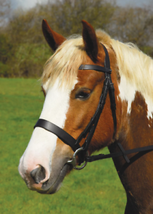 Full, Havana Brown Heritage English Leather /'Comfort/' Bridle With Flash Noseband inc Rubber Reins