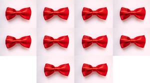 LOT OF 10 Red Men/'s Adjustable Bowties//Bow tie Tuxedo Wedding