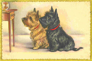 Cairn Terrier Dogs  by Lucy Dawson 1930/'s ~ 8 LARGE New Christmas Note Cards