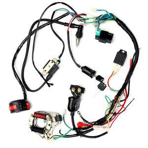 image is loading zebra-electrics-atv-quad-stator-coil-cdi-wiring-